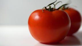 Verse tomaat op wit Royalty-vrije Stock Afbeelding