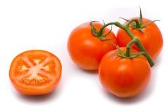 Verse tomaten. Stock Afbeelding