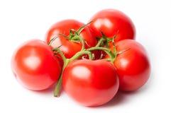 Verse tomaten Royalty-vrije Stock Fotografie