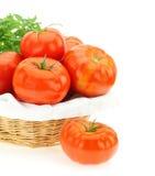 Verse tomaten Royalty-vrije Stock Afbeelding