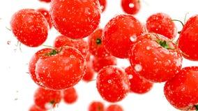 Verse tomaten die met waterdalingen vallen Het concept van het voedsel isoleer het 3d teruggeven Stock Afbeelding