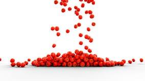 Verse tomaten die met waterdalingen vallen Het concept van het voedsel isoleer het 3d teruggeven Royalty-vrije Stock Fotografie