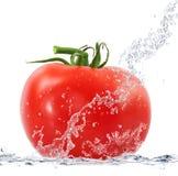 Verse tomaten die in water vallen Stock Foto's