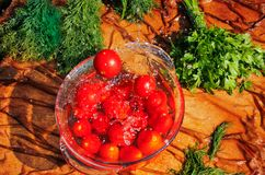 Verse tomaten die in zuiver water vallen Royalty-vrije Stock Afbeeldingen