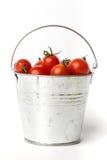 Verse tomaten in een emmer op witte achtergrond Royalty-vrije Stock Foto