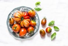 Verse tomaten en basilicumbladeren op een lichte achtergrond, hoogste mening royalty-vrije stock afbeeldingen