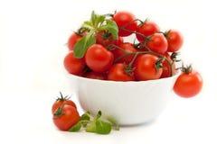 Verse tomaten met groen geïsoleerd blad Royalty-vrije Stock Foto