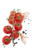 Verse tomaten met knoflook en peper Royalty-vrije Stock Fotografie