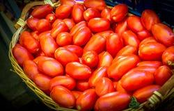 Verse tomaten op de groene koolzaadachtergrond Stock Afbeelding