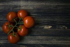Verse tomaten op een tak stock afbeelding