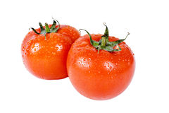 Verse tomaten over wit stock afbeelding