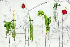 Verse tomaten, radijzen, broccoli, greens, sla in plonswater Stock Fotografie