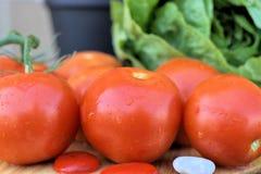 Verse tomaten Rijpe tomaten van de verscheidenheid van Rome Stock Afbeelding