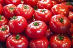 Verse tomaten Rode tomaten De organische tomaten van de dorpsmarkt Kwalitatieve achtergrond van tomaten Stock Foto's