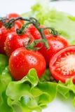 Verse tomatenclose-up Royalty-vrije Stock Fotografie