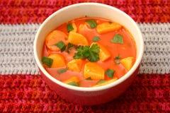 Verse tomatensoep met aardappels stock foto