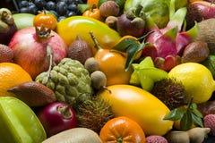 Verse tropische vruchten royalty-vrije stock afbeeldingen