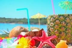 Verse tropische vruchten door het overzees Stock Foto's