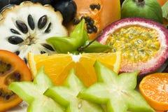 Verse tropische vruchten royalty-vrije stock foto's
