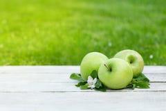 Verse tuin groene appelen stock foto's