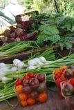 Verse tuingroenten bij een tribune van de landbouwersmarkt Stock Fotografie