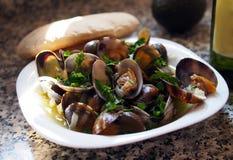 Verse tweekleppige schelpdieren bij Spaanse zeevruchtenkoffie royalty-vrije stock afbeelding