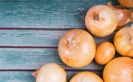 Verse uibollen op houten achtergrond Groenten voor een gezonde voeding De bolui is rijk aan vitaminen, de nuttige lente Uischil o stock afbeelding