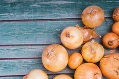 Verse uibollen op houten achtergrond Groenten voor een gezonde voeding De bolui is rijk aan vitaminen, de nuttige lente Uischil o royalty-vrije stock afbeeldingen