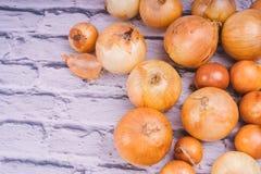 Verse uibollen op witte achtergrond Groenten voor een gezonde voeding De uien zijn rijk aan nuttige vitaminen Uischil stock afbeeldingen