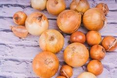 Verse uibollen op witte achtergrond Groenten voor een gezonde voeding De uien zijn rijk aan nuttige vitaminen Uischil royalty-vrije stock afbeelding