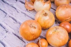 Verse uibollen op witte achtergrond Groenten voor een gezonde voeding De uien zijn rijk aan nuttige vitaminen Uischil stock fotografie