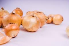 Verse uibollen op witte achtergrond Groenten voor een gezonde voeding De uien zijn rijk aan nuttige vitaminen Uischil stock foto
