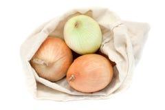 Verse uien in een zak Royalty-vrije Stock Foto