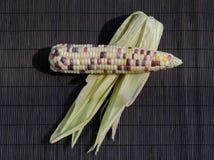 Verse veelkleurige zoete organische graan dichte omhooggaande mening Stock Foto