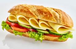 Verse vegetarische baguettesandwich met kaas stock afbeelding