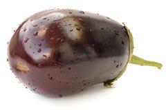 Verse violette geïsoleerde erfgoedaubergine Stock Foto