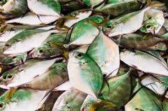 Verse vissen bij de marktkraam Royalty-vrije Stock Foto