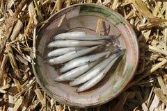 Verse vissen in de Peruviaanse Andes. Royalty-vrije Stock Afbeelding