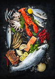 Verse vissen en zeevruchten Royalty-vrije Stock Foto's
