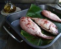 Verse vissen met groenten royalty-vrije stock afbeelding