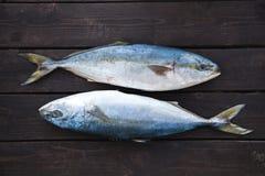 Verse Vissen op Houten Achtergrond Yellowtail Amberjack Royalty-vrije Stock Afbeeldingen