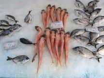 Verse Vissen op Ijs in Athene, Griekenland Stock Fotografie