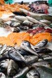 Verse vissen op ijs in vissenmarkt stock afbeelding