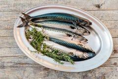 Verse vissen op lijst Royalty-vrije Stock Afbeelding