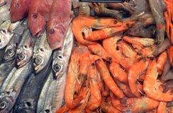 Verse vissen op markt in Sofia, Bulgarije, op 15 Februari, 2017 Stock Fotografie