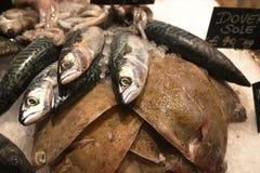 Verse Vissen op Verkoop in Winkel met Ijs Stock Afbeeldingen