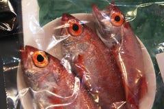 Verse vissen in rood voor verkoop stock foto's