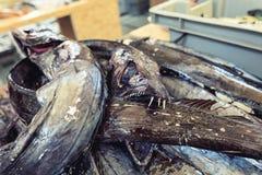 Verse vissen van de markt van Madera Stock Foto's