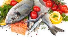 Verse visseninzameling Stock Fotografie