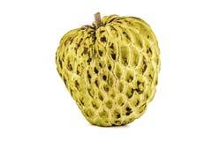 Verse Vla Apple of Rijp Sugar Apple Fruit Annona, sweetsop Geïsoleerd op witte achtergrond met het knippen van weg/goed-tak Royalty-vrije Stock Afbeelding